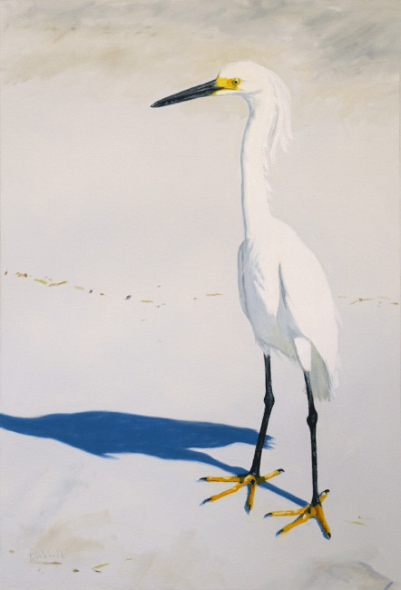 Snowy Egret, 21 x 14, oil on paper